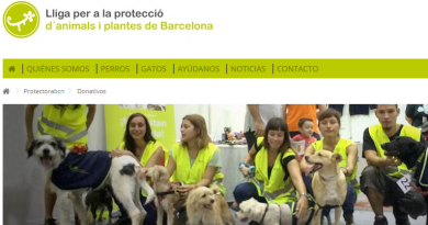 Donativo protectora animales de Barcelona